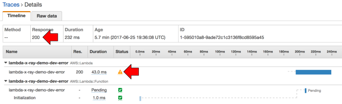 The trace details for the error function also reports a 200 even though its own status field indicates it had erred.